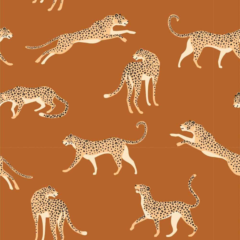 Jersey - Leopards Ocker