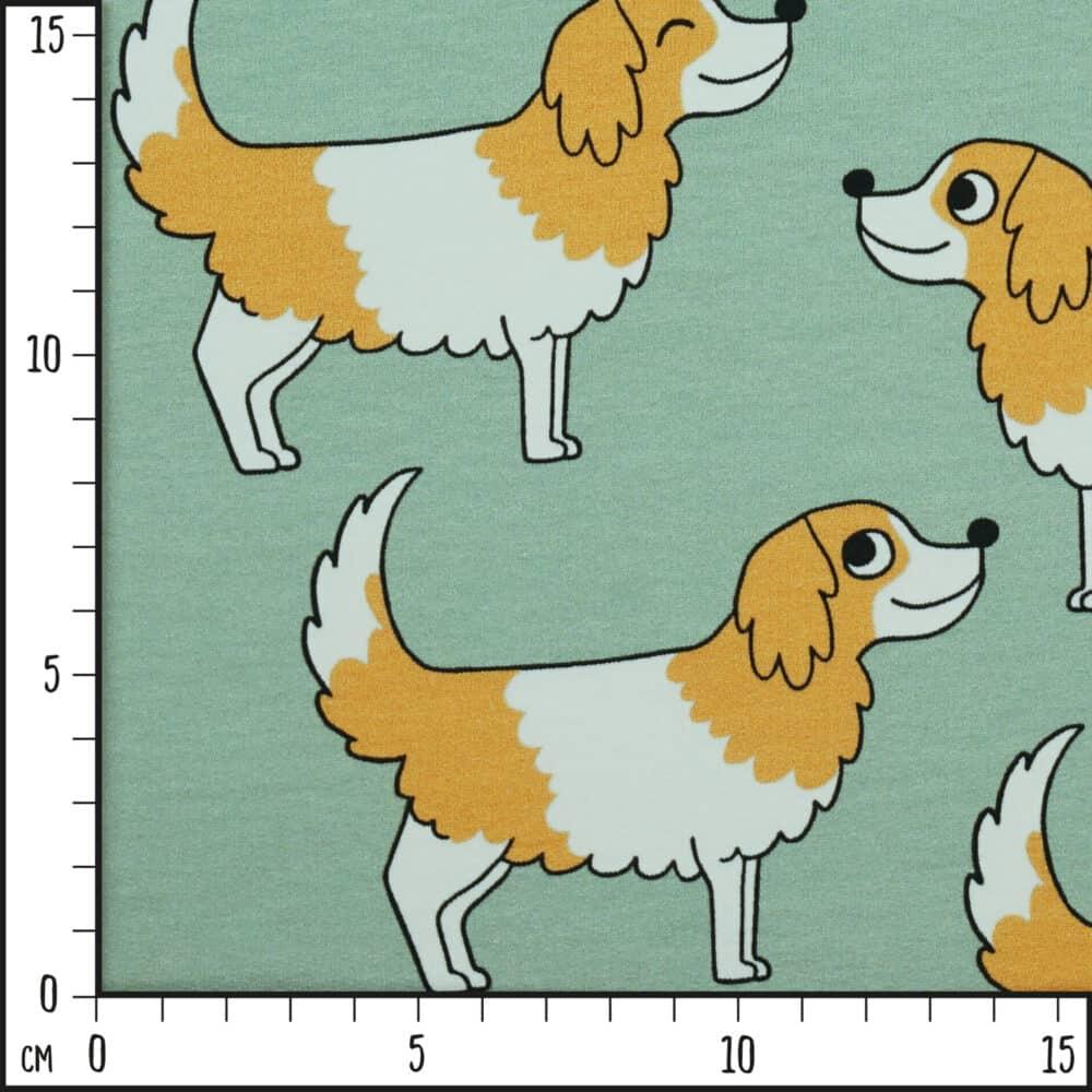 BioFT_DoggyGreen_Scale